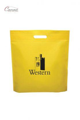 NW-WESTERN